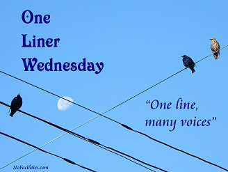 An unexpected twist –#1linerWeds