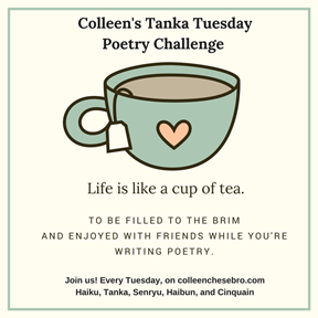 Colleen's Tanka Tuesday:  INSPIRATION and PLAN