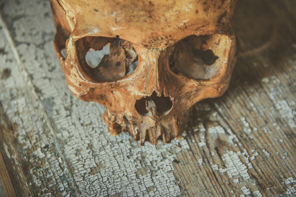 Ravishing Peril – In the Dark12